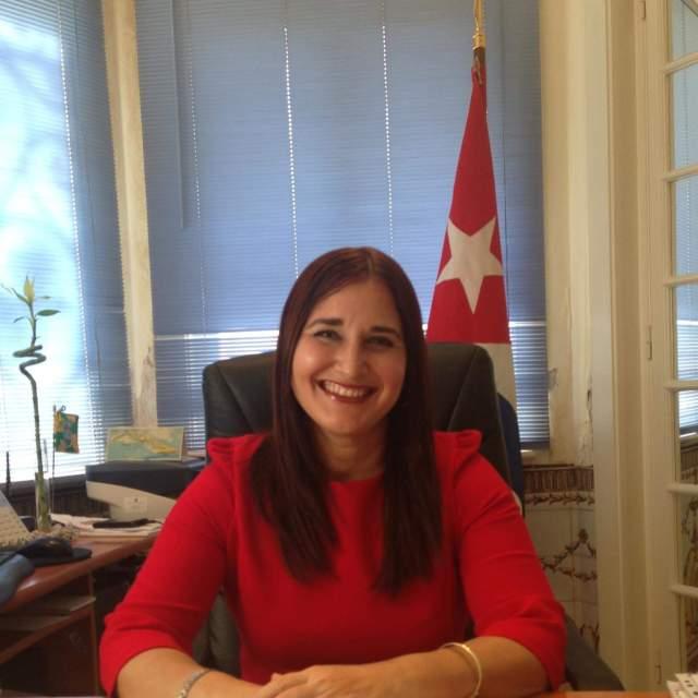 """Ouvida na comissão parlamentar de Negócios Estrangeiros, Johana Tablada sublinhou que """"em Cuba não se tortura nem há perseguição política""""."""